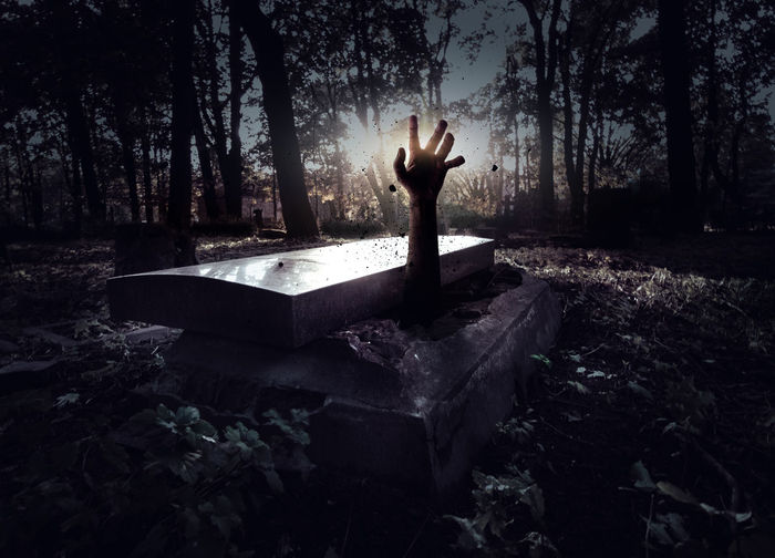 Hand rising out from the grave Cemetery Dark Darkness Death Evil Ghost Gothic Grave Halloween Horror Tomb Zombie Background Black Cadaver Coffin Creepy Dead Forest Graveyard Hand Night Nightmare Stone Tombstone