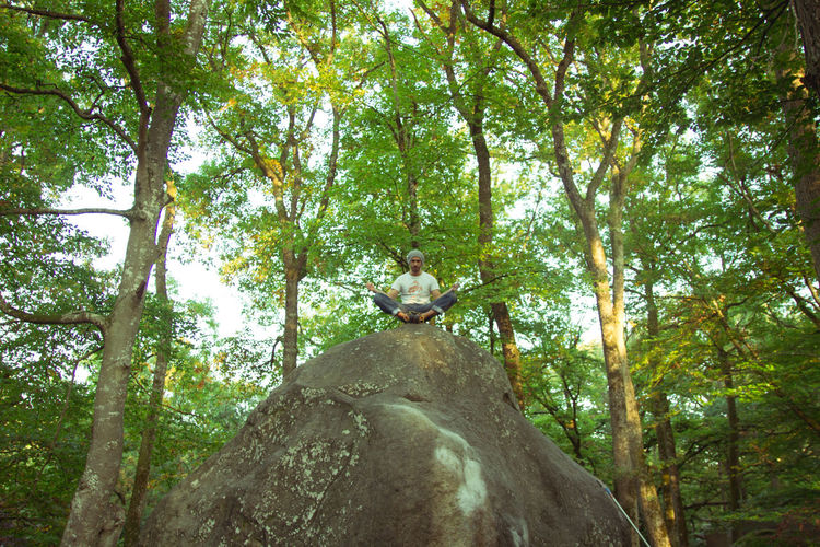 Nature Yoga Yoga Pose Casual Clothing Day Escalador Forest Front View Full Length Land Leisure Activity Lifestyles Low Angle View Nature One Person Outdoors Plant Real People Rock Rock - Object Sitting Solid Tree WoodLand Young Adult