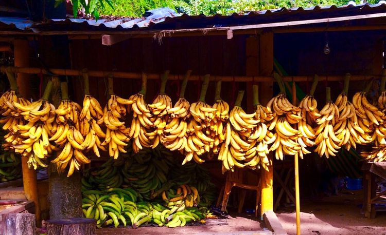 Large Group Of Objects Freshness Food Market Stall Bakery Healthy Eating Nature Market Yellow Provincetown  Provision Shop Provincetown  Bananas Litle Town Exploring Campinglife Carretera