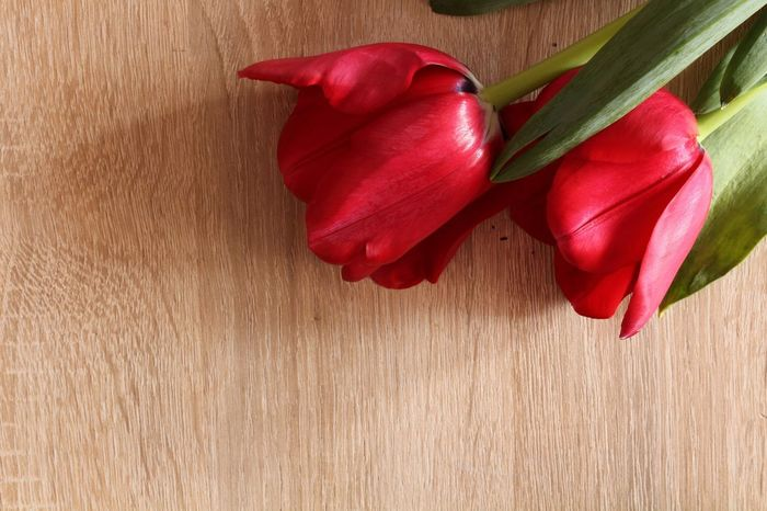 Red flowers Flowers Red Freshness No People Food Food And Drink Vegetable Flower Studio Shot Wood - Material Day Indoors  Nature