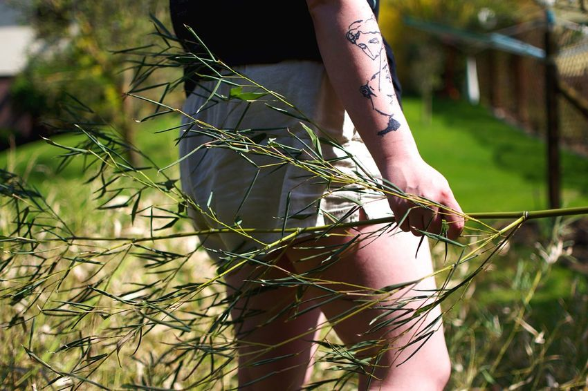 Girl with tattoo holding a twig. Tattoo One Person Plant Nature Lifestyles Leisure Activity Day Human Body Part Growth Real People Sunlight Grass Tree Outdoors Field This Is My Skin