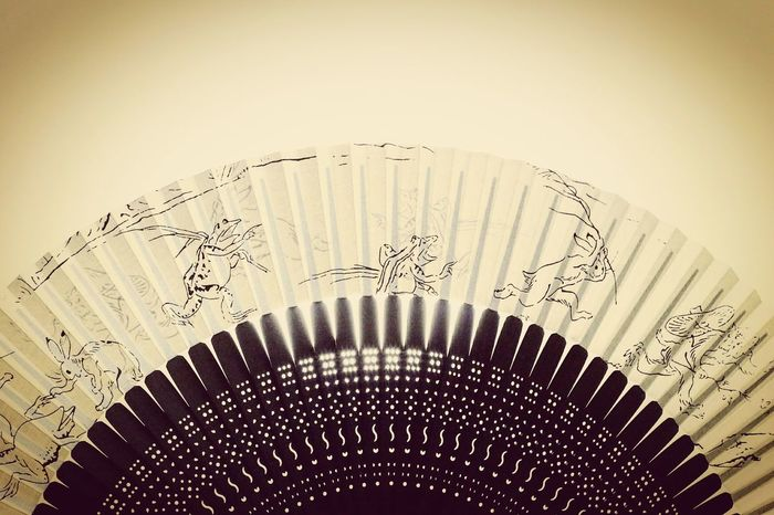 扇子 鳥獣戯画 Folding Fan Birds And Beasts Caricature Japan Japan Photography