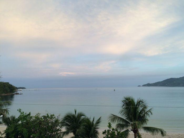 good morning Phuket Enjoying Life