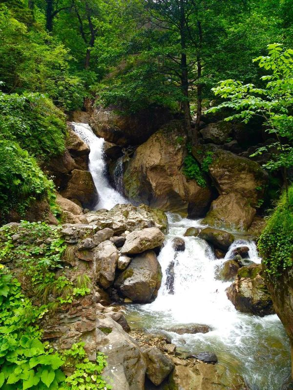 Nature Water Waterfall Beauty In Nature Idyllic Scenics Rock - Object Tree Flowing Water Green Color Forest No People Freshness Beauty Vacations Environment Non-urban Scene Outdoors Rain Springtime Sumela Trabzon Trabzon Uzungol Turkey EyeEm Tourism