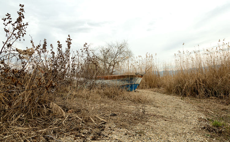 Lakeside Beauty In Nature Cakirca Cloud - Sky Deterioration Fishing Boat Grassy Iznik Lakeside Nature Outdoors Reed - Grass Family Reeds Reeds At The Lake Reeds By Water Reeds, Weeds, Marshland, Marsh, Sand Shoreline Shorelines Sky Turkey