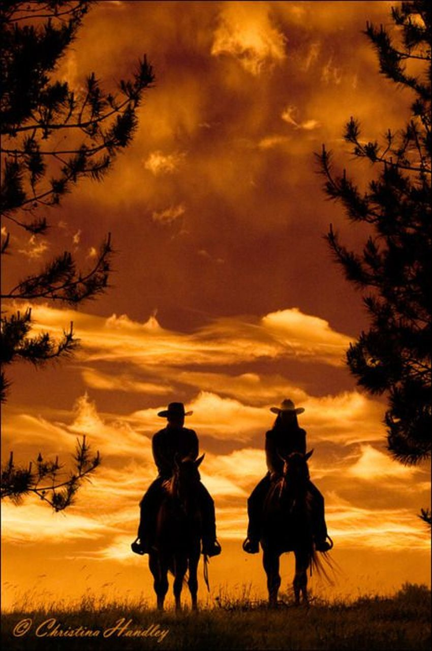 silhouette, sunset, adult, togetherness, sky, people, cowboy, tree, two people, nature, full length, outdoors, domestic animals, men, beauty in nature, adults only, only men, mammal, day