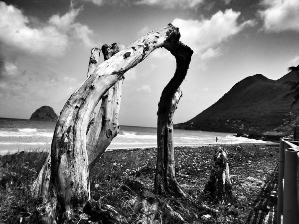 Blackandwhite Monochrome Life Is A Beach Check This Out