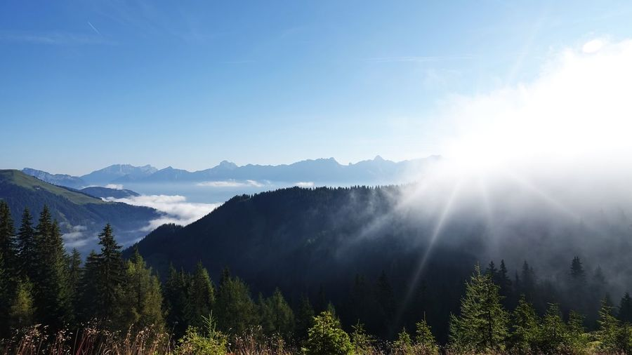 EyeEm Best Shots EyeEm Nature Lover Morning Alps Austria Beauty In Nature Bright Day Environment Idyllic Landscape Lens Flare Mountain Mountain Range Nature No People Non-urban Scene Outdoors Scenics - Nature Sky Sun Sunbeam Sunlight Tranquil Scene Tranquility Tree Foggy Sunrise Weather Mist Relaxing Moments