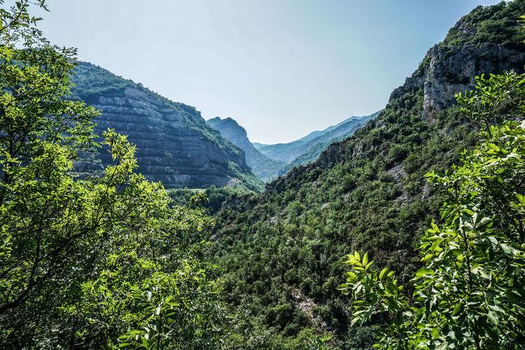 Liguria hills