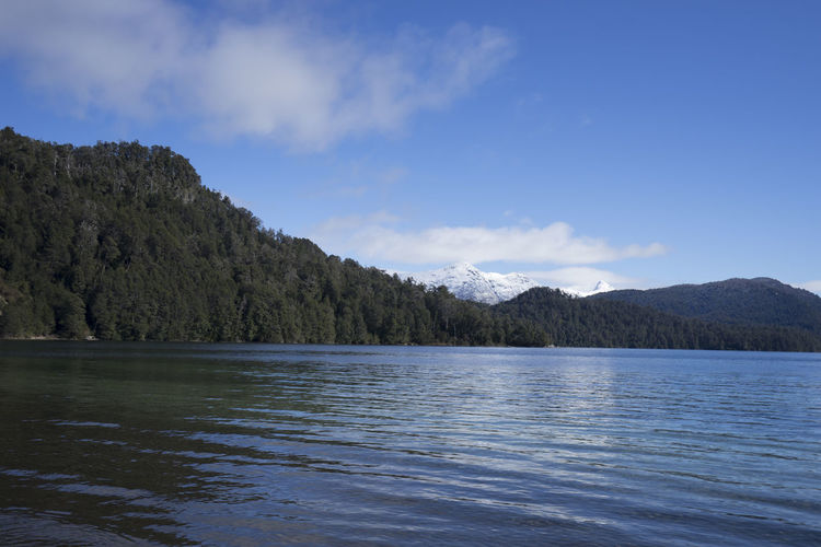Patagonia Lake View Argentina Blue Forest Lake Lake View Lakeshore Nature Patagonia Peaceful Reflection Relax Serenity Sky Snow Snow Capped Mountains Travel Tree Water Waves