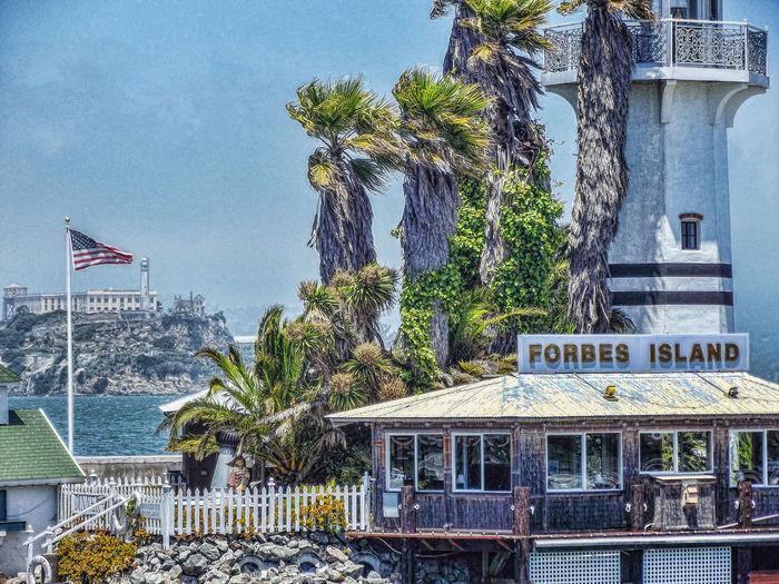Alcatraz Architecture Building Exterior Built Structure City Day Fisherman's Wharf Flag No People Outdoors Palm Tree Patriotism Pier 39 San Francisco Sky Text Tree