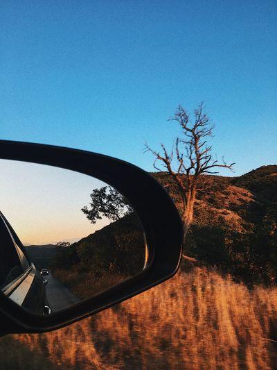 The Week On EyeEm Car No People Road Roadtrip