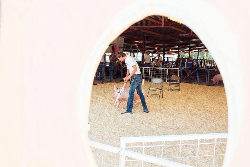 2016 Jefferson county Fair Fairbury Nebraska A Day In The Life Camera Work Countyfair Cultures Fair Farm Life Fatmer Frame Within A Frame Lifestyles Nebraska Photography Picoftheday Rural America Shooting Photos