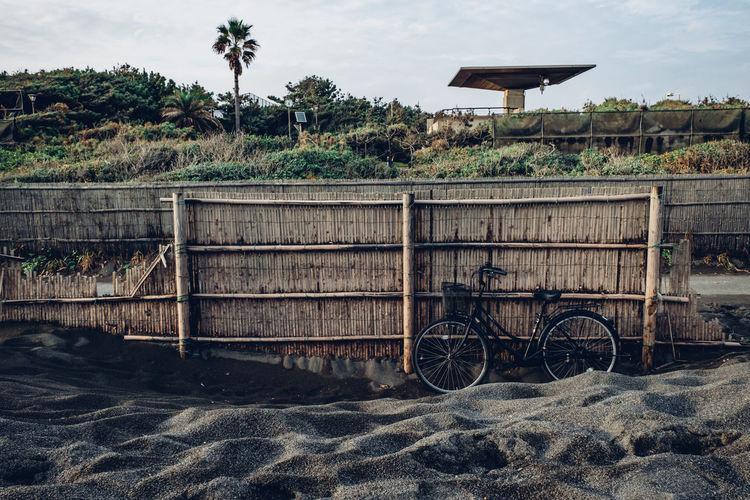 Bicycle parking at a black sand beach in Japan Bicycle On The Beach Japanese Beach Architecture Beach Bicycle Bicycle Parking Bicycles Black Sand Beach Building Exterior Built Structure Cloud - Sky Day Land Nature No People Outdoors Palm Tree Plant Sand Sky Transportation Tree Tropical Climate Water Wood - Material
