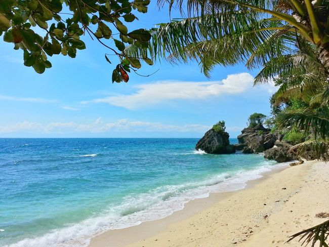A hidden gem. Sea Beach Tropical Climate Nature Tree Travel Destinations Vacations Tranquility Tranquil Scene Idyllic Sand Scenics Summer Nature Wandering Beachphotography Wanderlust Travel Photography Philippines Nature_collection Beauty In Nature Beach Life Vacations Seascape