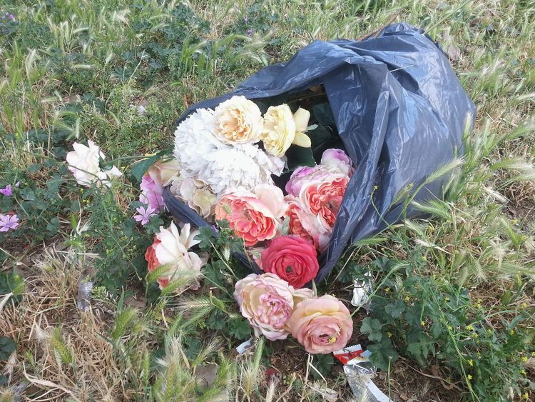 Grass Fake Flowers Flower No People Nature Outdoors Day Flower Head Rubbish Trash In Nature Environmental Pollution Pollution