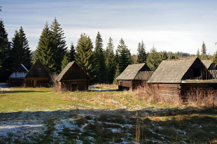 Agricultural Building Agriculture Architecture Cottage Farmhouse House Hut Huts Jurgow Jurgow Nature No People Podhale Poland Polen Roof Tatry Tree Wood - Material Wooden Wooden House