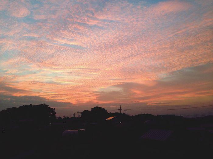 夕焼けいわし雲