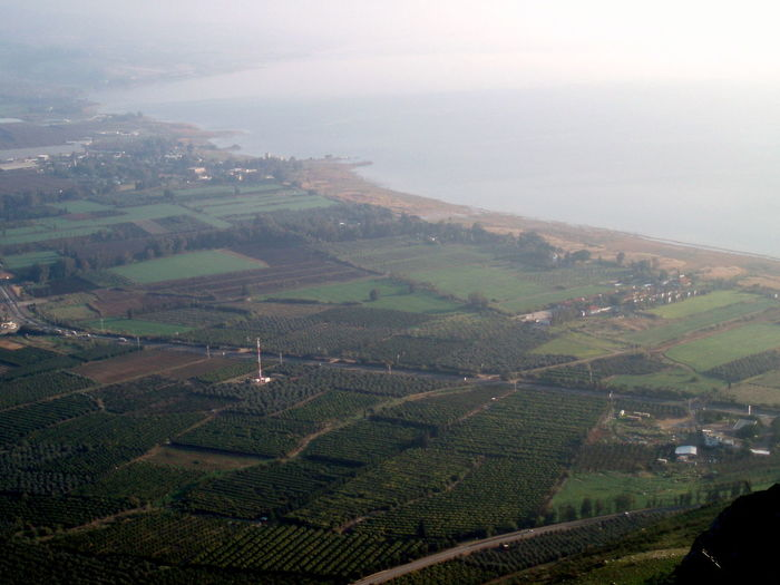 Lake Israel Tea