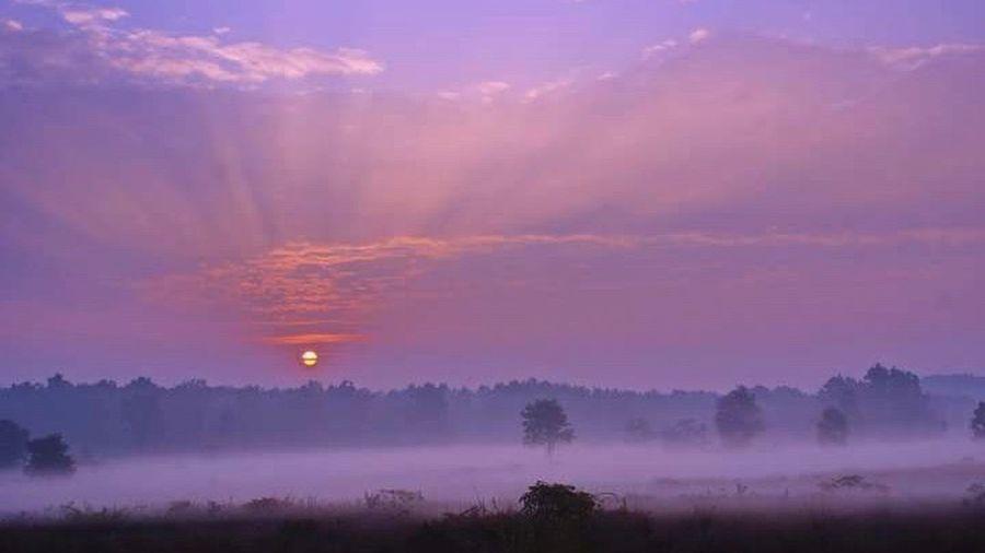 Sunrise Beautiful Nature Dawn Good Morning Incredible India Nature Landscape Tranquility Winter