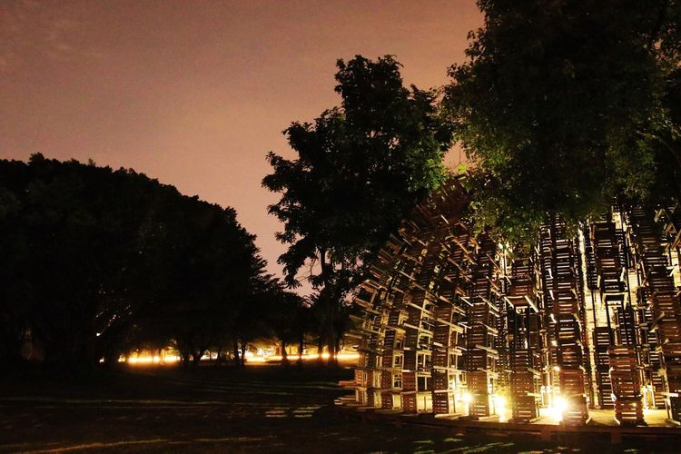 Low angle view of illuminated trees by building against sky at night