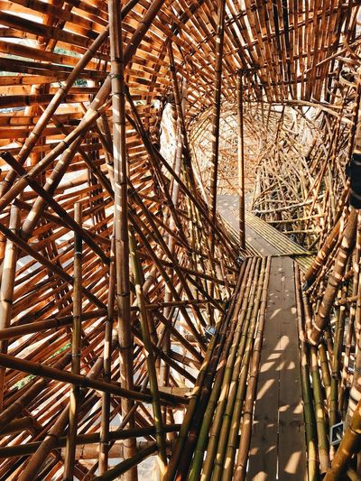 COMPLEX Art Bamboo Low Angle View No People Day Full Frame