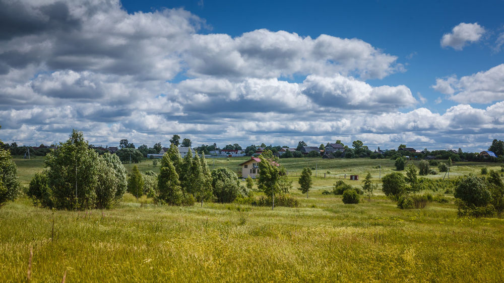 Rural landscape Sunny day Blue Sky, Clouds Rural Blue Sky Cloud - Sky Clouds Day Green Color Landscape Nature Non-urban Scene Outdoors Rural Landscape Rural Scene Scenics - Nature Sky Sunny Day Tree