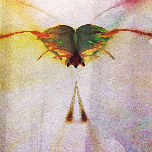 Metamorphosis. #Ipmanifesto NEM Still Life NEM Painterly Mob Fiction