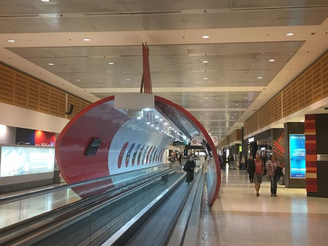 Qantas terminal, sydney Airport Indoors  Transportation Large Group Of People Travel Public Transportation Railroad Station Illuminated Modern Journey Architecture Real People Railroad Station Platform Built Structure Women Men People Day