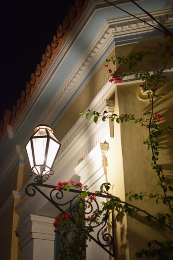 Architecture of Poros Architecture Building Built Structure Ceiling Day Decoration Electric Lamp Flower Flowering Plant Hanging House Illuminated Indoors  Lighting Equipment Low Angle View Nature No People Plant Potted Plant Window