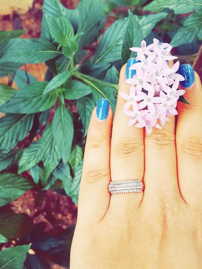 Engagement Ring Diamonds Are A Girl's Best Friend