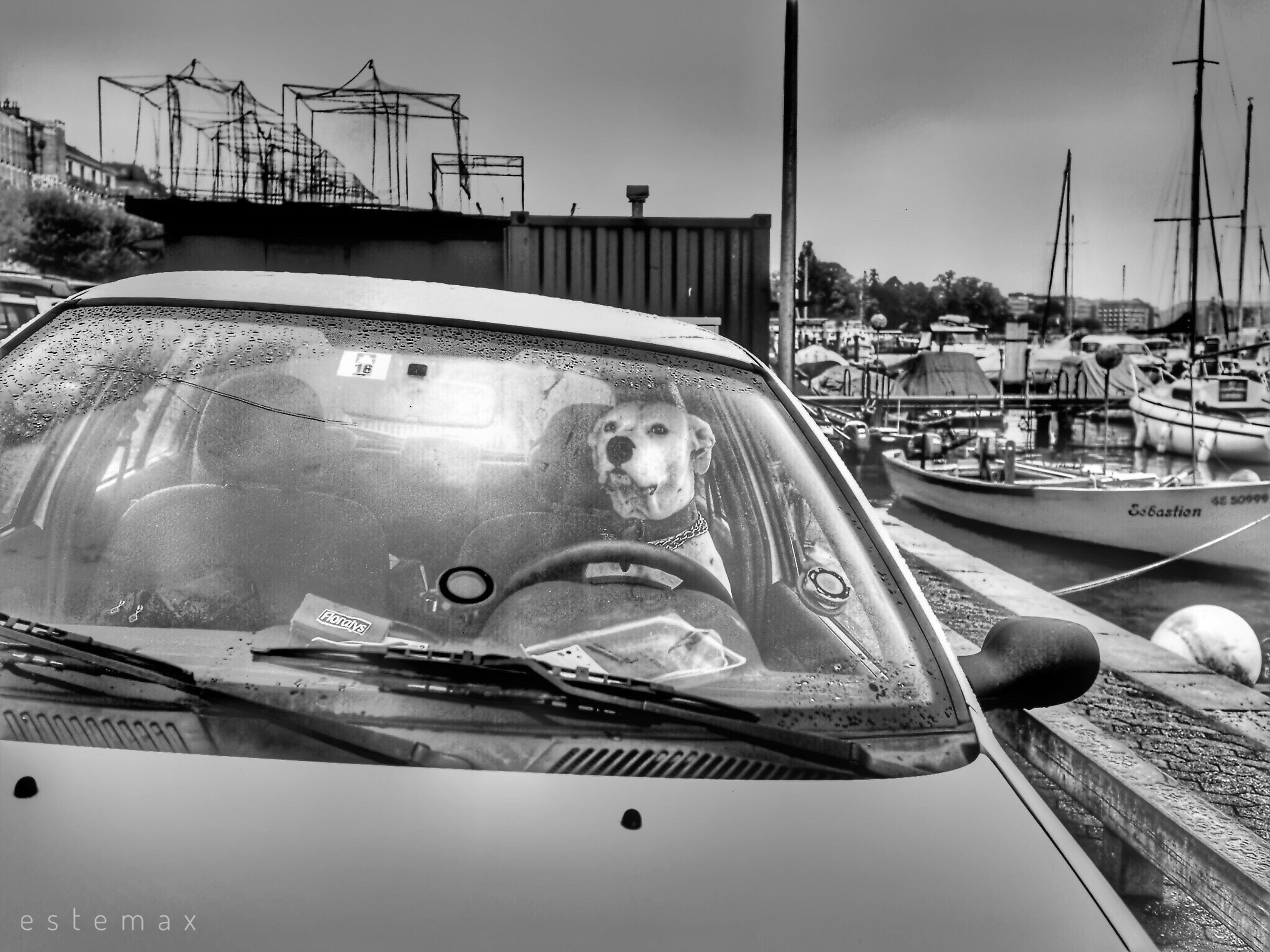 transportation, mode of transport, water, leisure activity, nautical vessel, day, outdoors, real people, sky, portrait, sea, one person, close-up, yacht, people