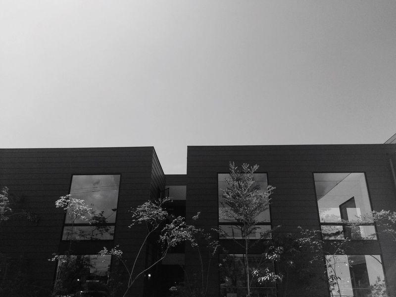 Architecture Blackandwhite Kumamoto