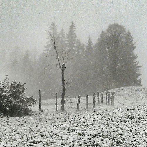Snowfall. First Snow Moody Eye4photography  Wildschönau Fencepost Friday Landscape Snow