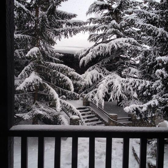 Taking Photos Enjoying Life Snow ❄ Streetphotography