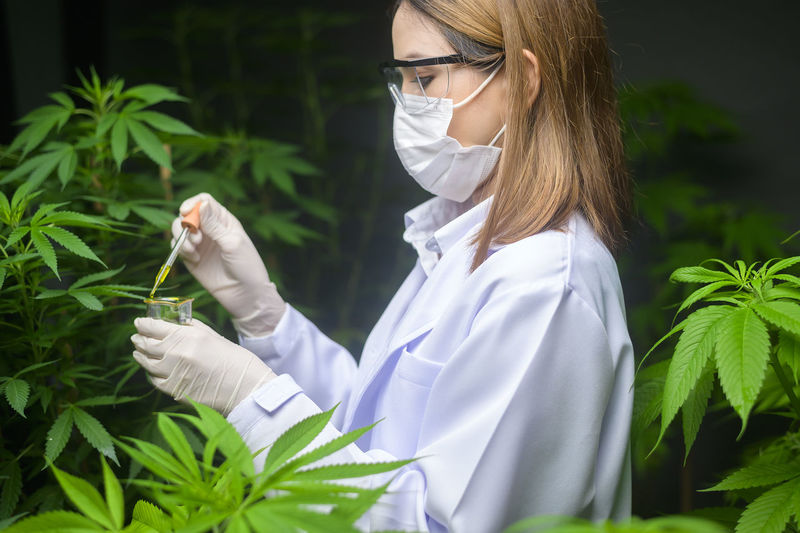 Midsection of woman holding plant at night