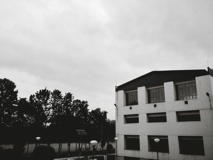 Blackandwhite Black & White Nocolor Architecture Built Structure Building Exterior Low Angle View Outdoors Window Sky Day No People Tree Abstract Photography Abstract Art Black And White Collection  Contrasts Monsoon Rainy Day Rain First Eyeem Photo