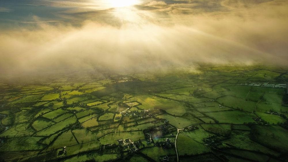Fog Lifting Dublin Ireland Inspire2 Drone  Dji Farm Tranquil Scene Tranquility Field Patchwork Landscape Idyllic Day Outdoors Cultivated No People Tree
