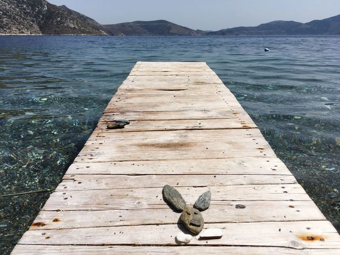 Creativity Stone Summer Summer Game Water Nature Day Animal Sea No People Wood - Material Animal Themes Outdoors High Angle View