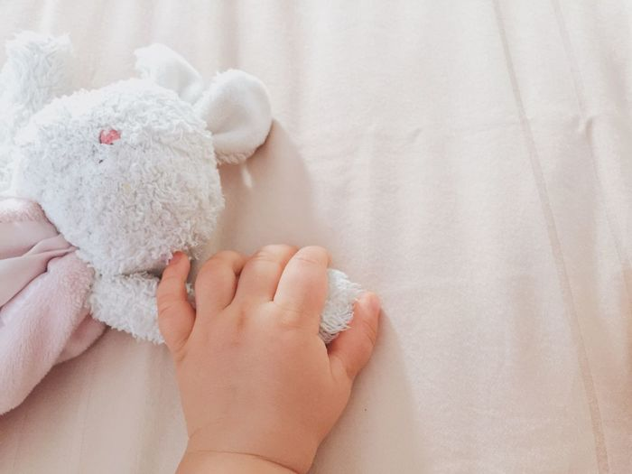 Childhood Human Hand Real People Indoors  Baby Babyhood Sheet Textile Lying Down Newborn Bed Fluffy Toys Bunny  Holdinghands Comfortable Friendship