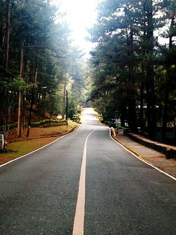 Endlessness Nexus5photography Road Outdoors Outdoor Photography Trees Pma Baguio City