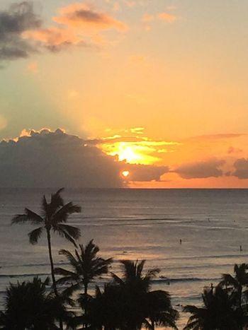 Pacific Sunset Oahu Hawaii Oahu / Hawaii Oahu, Hawaii Oahu Island Of Oahu, Hawaii Pacific Ocean Pacific Ocean View Pacific Ocean Sunset Pacific Ocean Sky No Edit/no Filter Ocean Cloud - Sky No People Horizon Over Water Silhouette Palm Tree Sun Sunset An Eye For Travel The Great Outdoors - 2018 EyeEm Awards