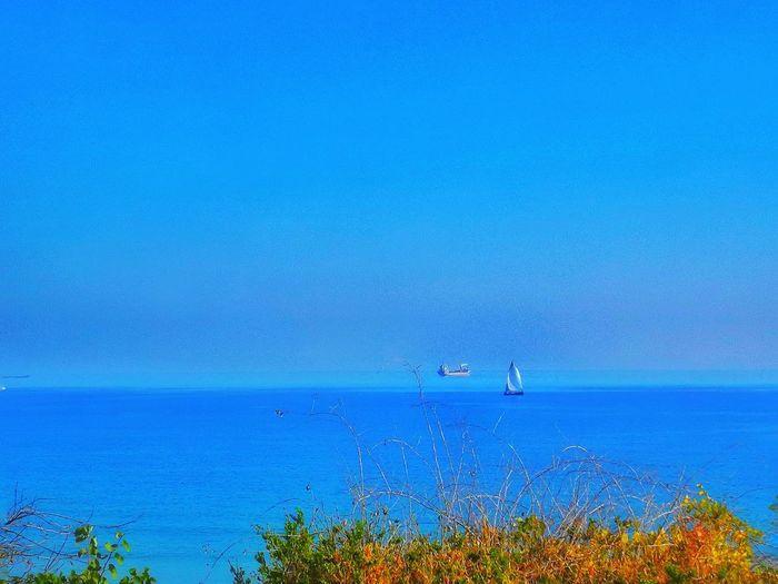 ship and boat