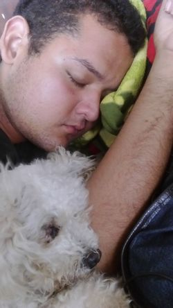 This is my son and our Pet Sleeping People Sleeping Dog Sleeping Boy Sleeping People French Poodle Bed Time Sleepy Pet Portraits