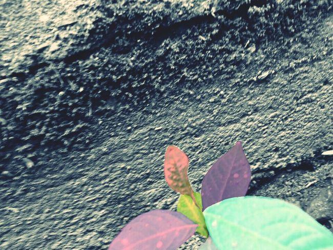 Eyeem Photography One Person First Eyeem Photo Footpath