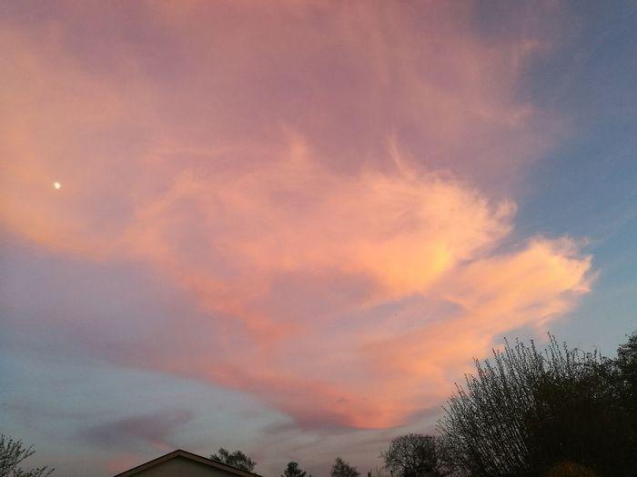 Evening sky Cloud - Sky Sunset Dramatic Sky Tranquility Nature