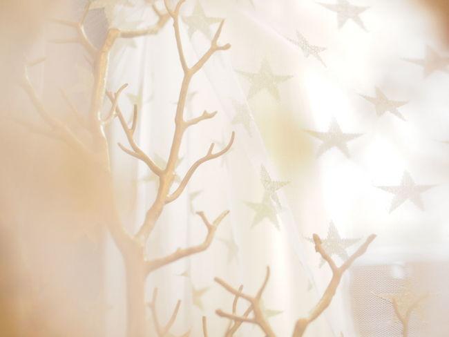 Christmas Decorations Christmas Tree WhiteCollection White Sunlight