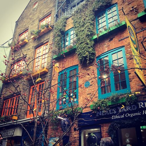 Building Exterior Architecture Built Structure Building Window Residential District Low Angle View No People City Plant Tree Day Outdoors Nature House Old Communication Apartment Illuminated Wall Neal's Yard London Monty Python House