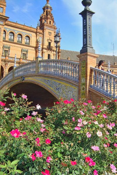 Arch Architecture Blooming Blossom Built Structure Capital Cities  City Day Famous Place Flower Green Color Growth Outdoors Pink Color Plant Plaza De España Plazadeespana Seville Spain Plaza Seville,spain Sky Tourism Travel Destinations