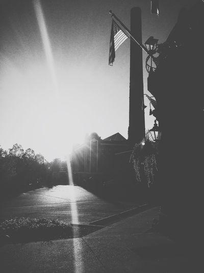 Morning Sun Blackandwhite Autumn